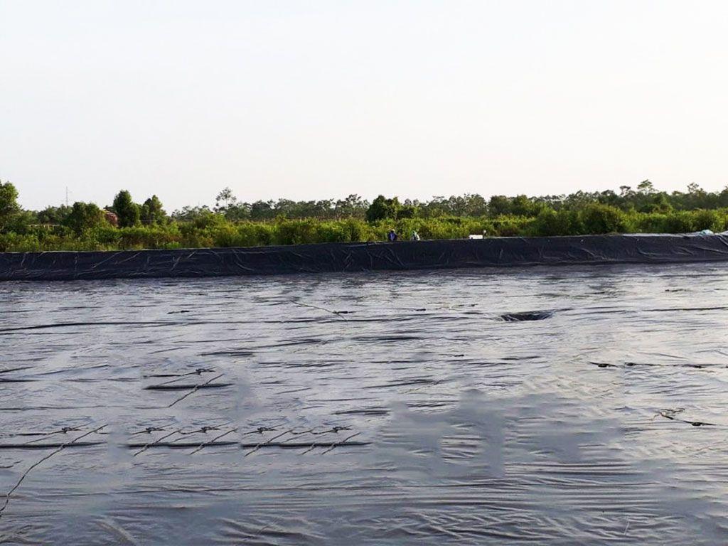 Địa Chỉ Bán Bạt Lót Hồ Chứa Nước Giá Rẻ Tại Ninh Thuận, Bạt HDPE Lót Ao Chứa Nước Nuôi Tôm Cá