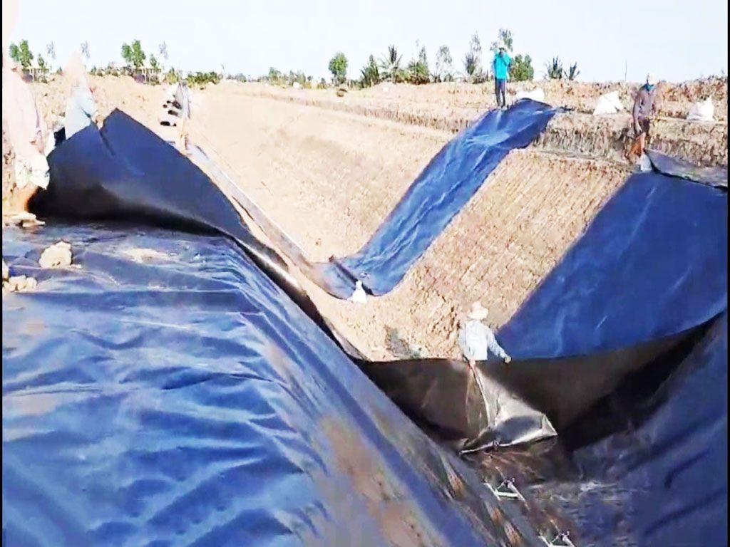 Bạt Nhựa HDPE Lót Ao Hồ Chứa Nước Nuôi Cá Tại Tây Ninh