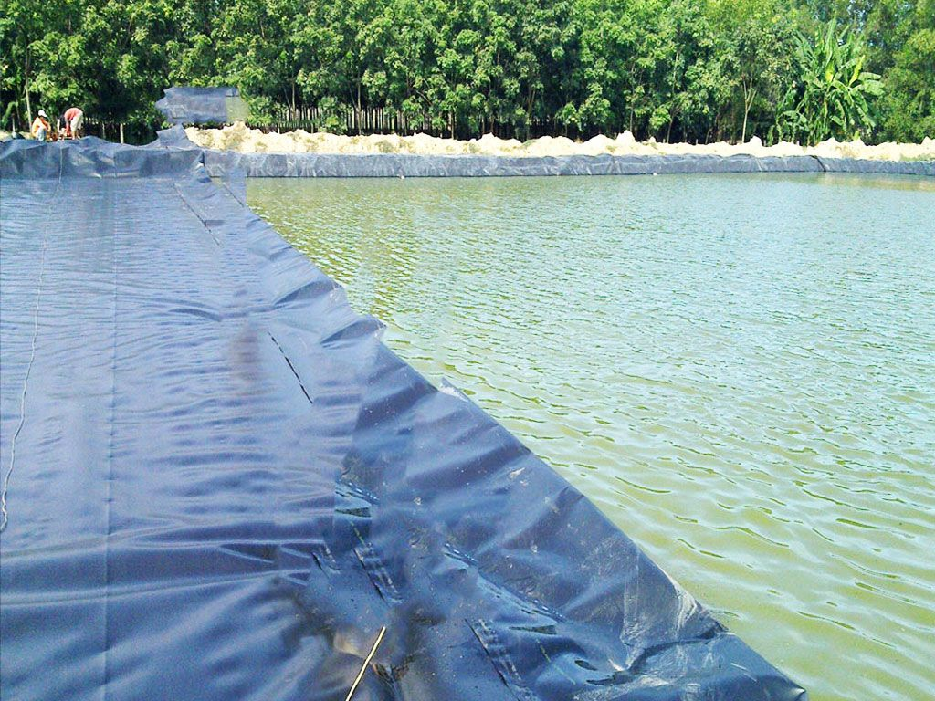 Bạt Nhựa HDPE Lót Ao Hồ Chứa Nước Nuôi Cá Tại Bảo Lộc