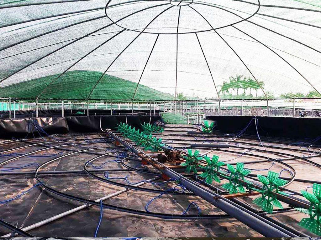 Địa Chỉ Bán Bạt Lót Hồ Chứa Nước Giá Rẻ Tại Khánh Hòa, Bạt HDPE Lót Ao Chứa Nước Nuôi Tôm Cá