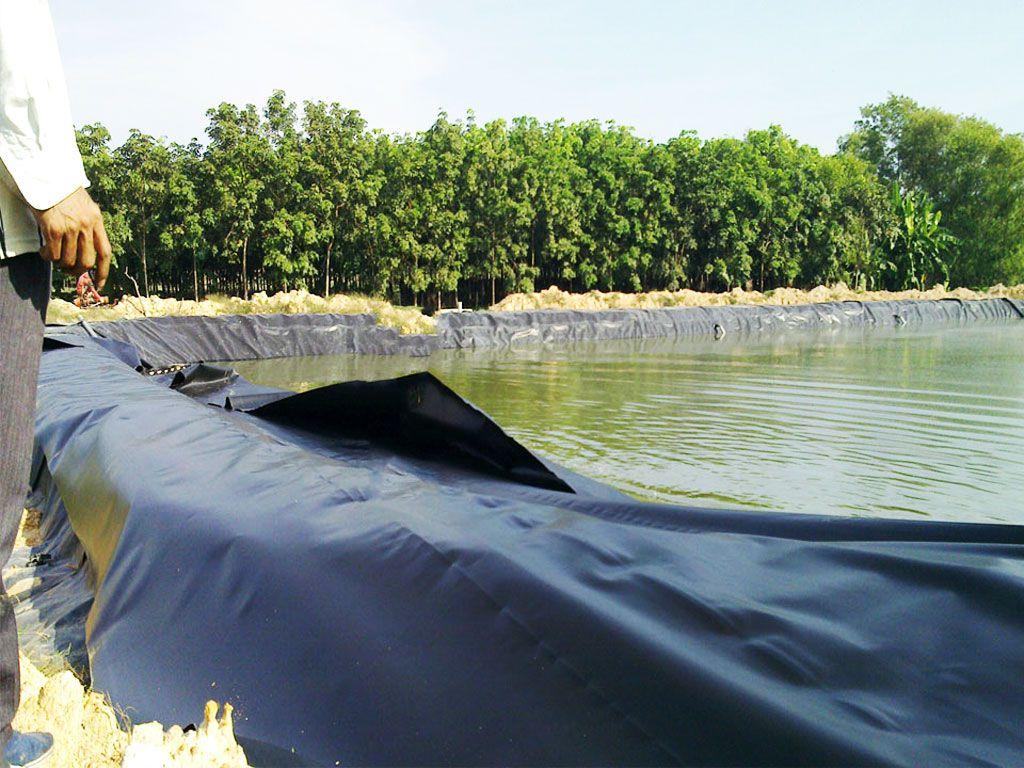 Bạt Nhựa HDPE Lót Ao Hồ Chứa Nước Nuôi Cá Tại Lâm Đồng