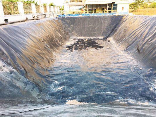bảng giá bạt lót hồ nuôi tôm, bạt lót bờ ao chứa nước trong chăn nuôi thủy sản